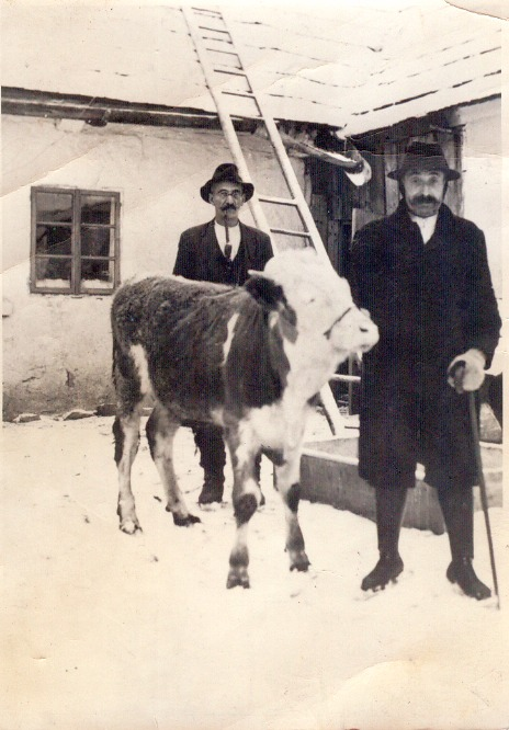 Viehkauf im Winter 1938/39