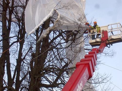 Kalter Baum am 19.11.2009