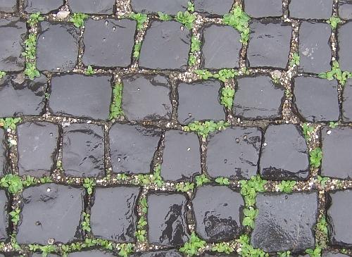 basaltpflaster in augsburg