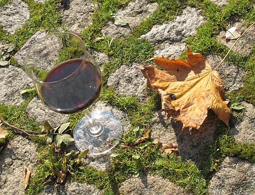 letztes Glas Spätburgunder auf den Herbst 2010