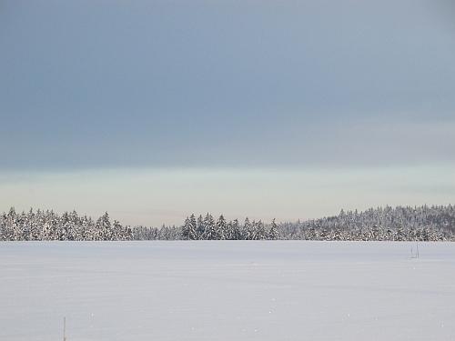 Winter am Fahrenberg